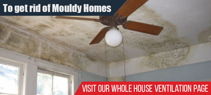 To Get Rid Of Mouldy Homes