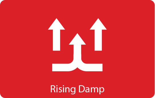 Rising Damp Solutions & Treatment For Your Home