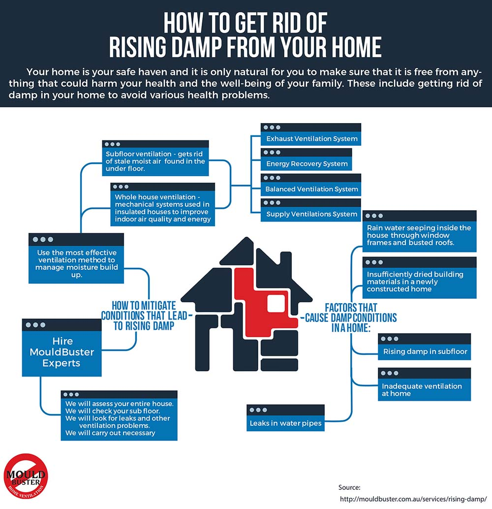 Infographic about ways to get rid of Rising Damp in your home, building or property to be mould free.